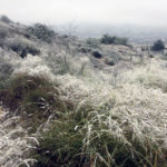 Durango registra temperatura de menos 4.5 grados y espera lluvias