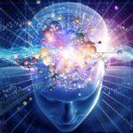 Científicos estudian por primera vez formación del pensamiento humano