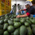 Los precios al consumidor en México suben un 5,55 % en enero a tasa anual