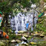 Por Tercer Año Consecutivo Xcaret es el Mejor Parque del Mundo