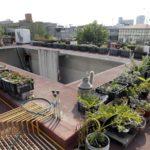 Huertos urbanos, vuelta a valores esenciales para reducir la huella ecológica
