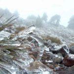 Reportan caída de nieve en zona montañosa de La Rumorosa