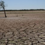 Degradación suelo pone en riesgo a 3.200 millones de personas, según expertos