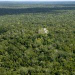 Los guardianes de la Biosfera Maya de Guatemala piden preserva el modelo