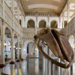 Uruguay transforma cárcel en centro de arte contemporáneo e historia natural