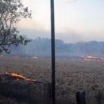 Gran incendio en reserva biológica de Nicaragua provoca marchas antagónicas