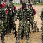 ELN condena asesinato de siete personas en la región colombiana del Catatumbo