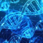 El genoma humano podría tener hasta un 20% menos de genes de lo que se creía