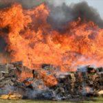 Paraguay tendrá su primer horno pirolítico para incinerar marihuana