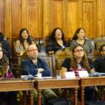 Denuncian en CIDH y ONU excluir menores de 14 en ley cambio de sexo en Chile