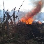Resultados sobre helicóptero accidentado en Puebla tardarán: SCT
