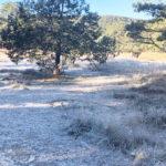 Continúan temperaturas gélidas en sierra duranguense