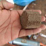 Jóvenes mexicanos crean biocombustible con desechos de almendras
