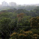 Ecuador quiere convertir en autosustentables a sus áreas protegidas