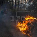 Incendio devora 70 hectáreas de bosques en Nicaragua y continúa sin control