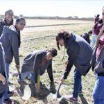 Inicia COBAED campaña de reforestación y recolección de pilas