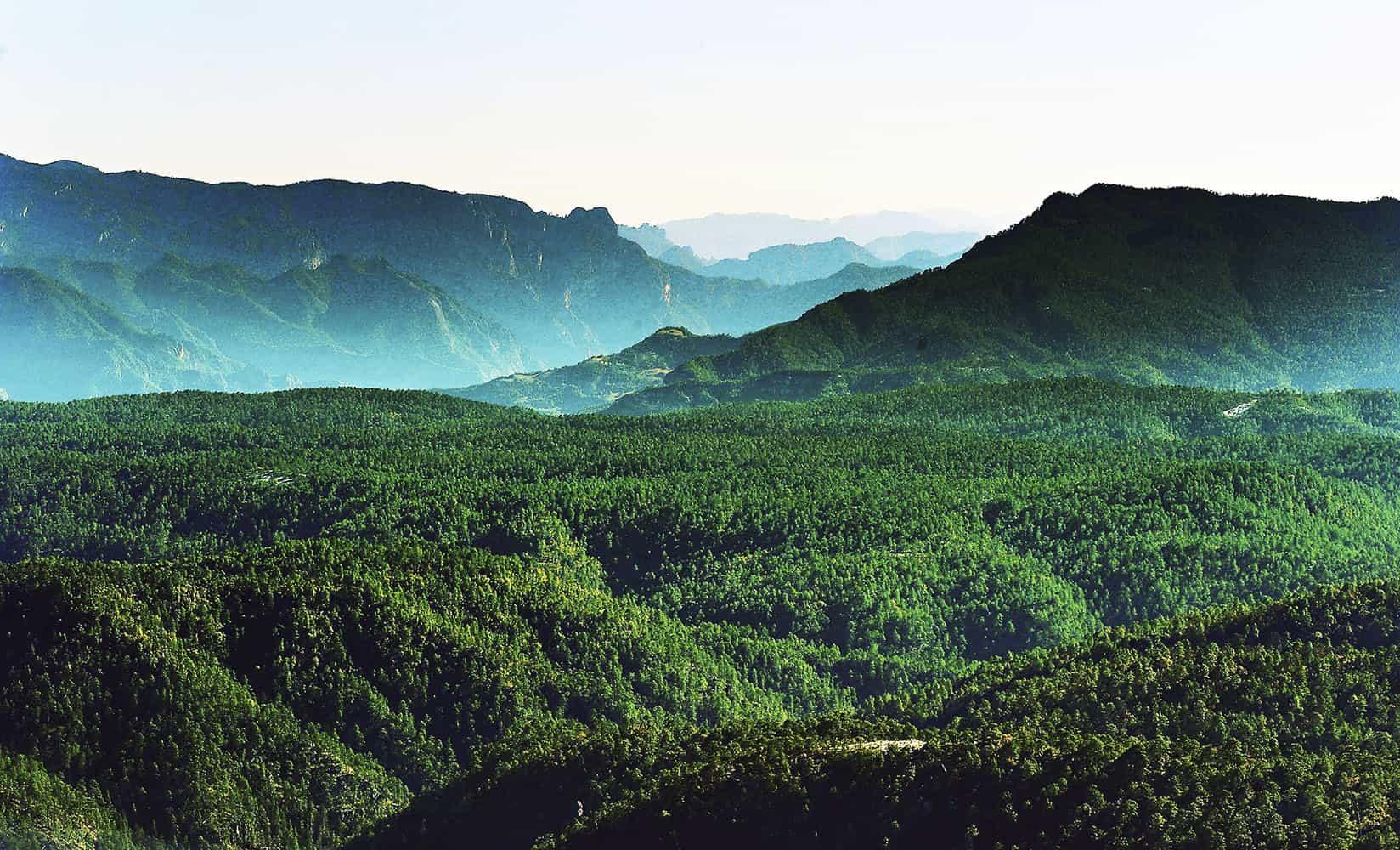 Sierras del Sarnoso y la India cerca de ser áreas naturales protegidas:  Gerardo Villarreal – Contacto Hoy
